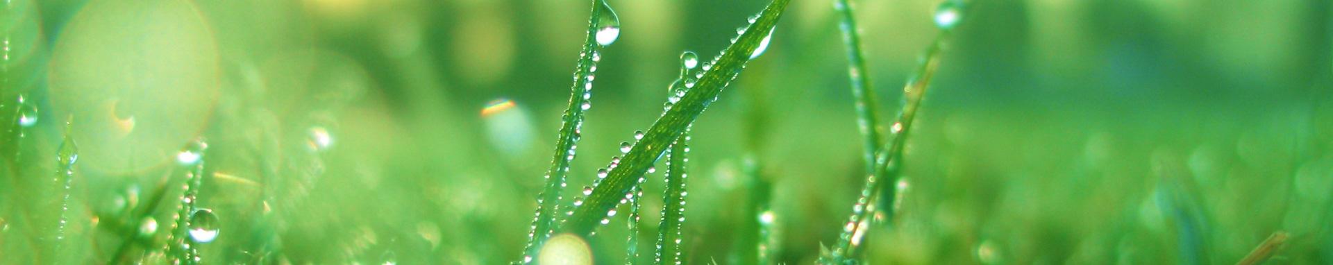 Irigatii agriprosolutions